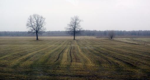 Orai: po snieguoto pirmadienio vėl atkeliaus permainos