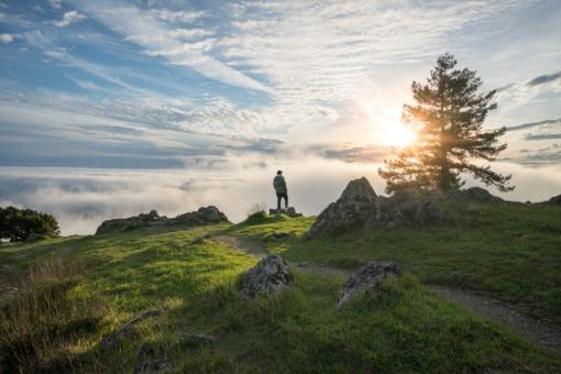 Tikėjimas kalnus verčia