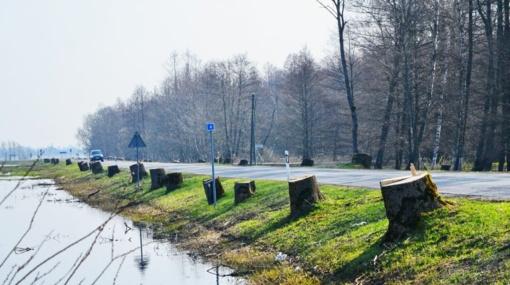 Šilutė-Rusnė kelio sankasos stiprinimo darbai kainuos beveik 6,3 mln. eurų