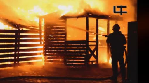 Per gaisrą Šiauliuose žuvo žmogus: teritorija degė antrą kartą (vaizdo įrašas)