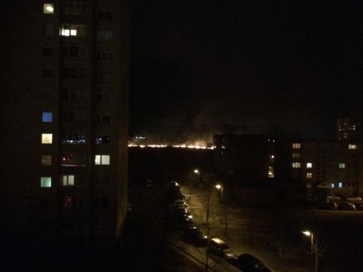 Pietiniame miesto rajone – dar vienas žolės gaisras