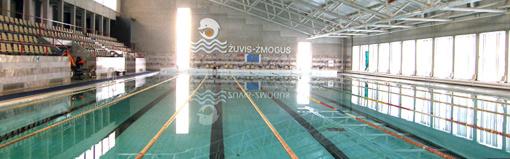 """,,Sporto komplekso su 50 m baseino draugystės g. 20 Elektrėnuose rekonstrukcija"""" pripažinta regioninės svarbos projektu"""