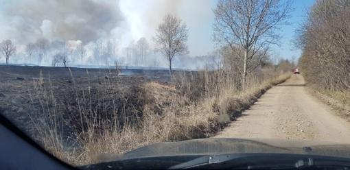 Panevėžyje išdegė 45 hektarai žolės