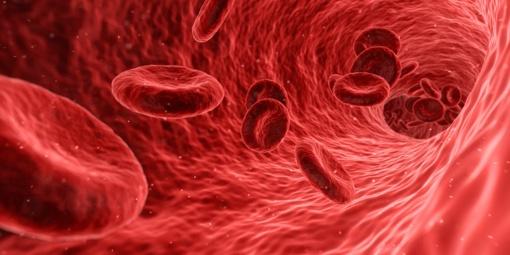5 produktai, stiprinantys kraują