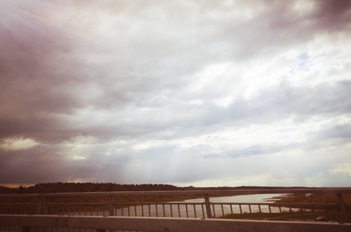 Jurbarke už 730 tūkst. eurų bus tvarkomas Mituvos upės slėnis