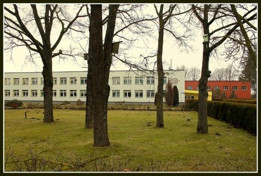 Vietoje pagrindinių – pradinės mokyklos