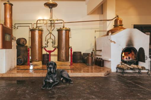 Pakruojo dvare atidaroma pirmoji craft stipriųjų gėrimų spirito varykla