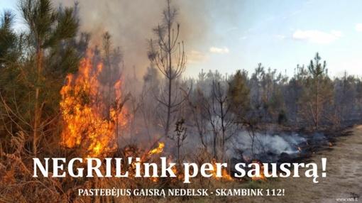 Gamtininkai ragina gyventojus atsisakyti iškylų miške