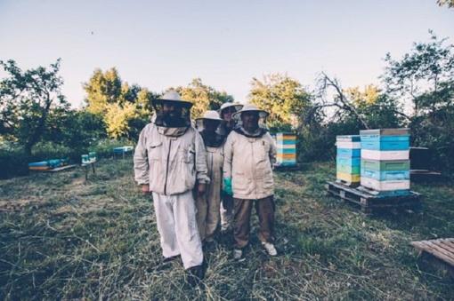 Parama trumpoms maisto tiekimo grandinėms skatina bendradarbiauti
