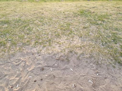 Gėluvos ežero pakrantė skęsta nuorūkose