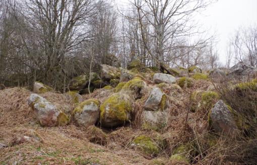 Gale lauko kaip akmenėlis stūkso Stūglių kaimas