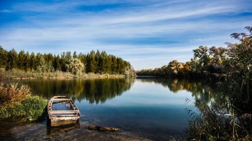 Raseinių rajone, įtariama, klijais užterštas upelis (papildyta)