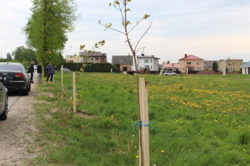 Aukštelkėje - medžių sodinimo akcija