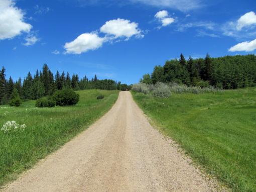 Žvyrkelis nuo Kaltinėnų iki Pagrybio bus asfaltuojamas