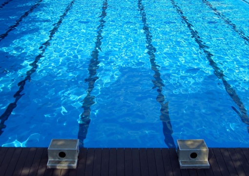 Plaukikas D. Rapšys Čempionų serijos varžybose JAV - antras