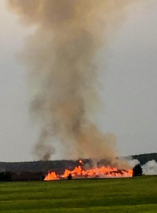 Trenkęs žaibas durpyne sukėlė didelį gaisrą (papildyta)