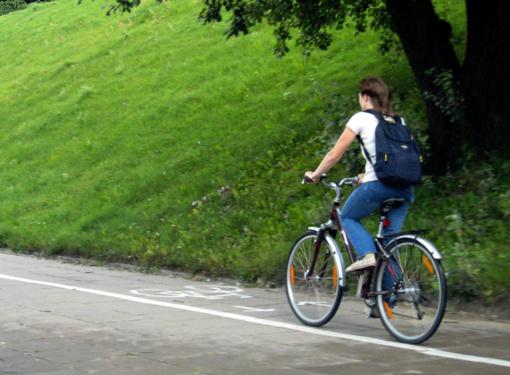 NŽT ir Savivaldybė sutarė, kaip užbaigti žemės paėmimo dviračių takui procedūras