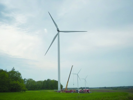 Rajone gali atsirasti šimtai vėjo jėgainių