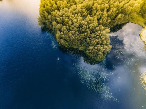 Vanduo kai kuriose maudyklose ir rekreacinėse zonose neatitinka higienos normos