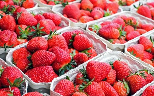 Vaistininkė pataria: braškės padės kovoti su inkštirais, vyšnios saugos odą nuo oksidacinės pažaidos