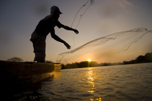 Aplinkosaugininkai sulaikė tinklais Širvintose ir Jurbarke žvejojusius asmenis