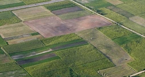 Marijampolės savivaldybėje nustatyti 2019 m. valstybinės žemės nuomos mokesčio tarifai
