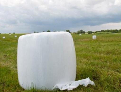 Meinartų kaime pavogė šieno rulonus
