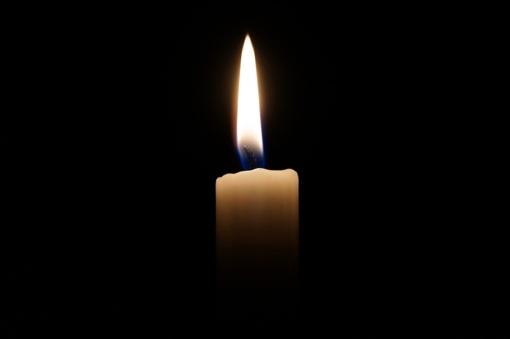 Šiaulių rajone šiltnamyje rasta negyva moteris