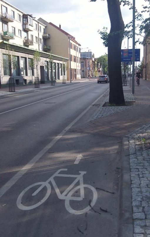 Šiaulių eismo specialistų (ne)kompetencija pribloškia: nurodyta rėžtis į medį