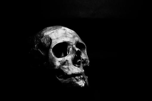 Panevėžyje rasta dešimt žmonių kaukolių
