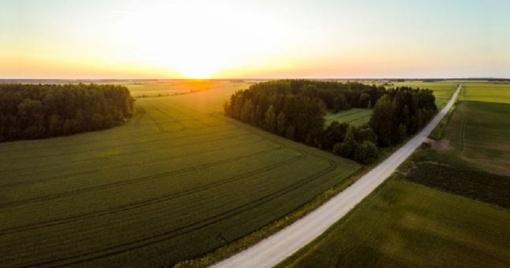 Klaipėdos rajonas ruošiasi tvarkyti kelius
