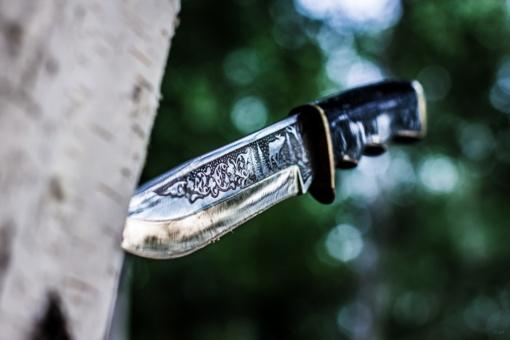 Biržų parke jaunuolį nužudęs vyras kalės 9 metus