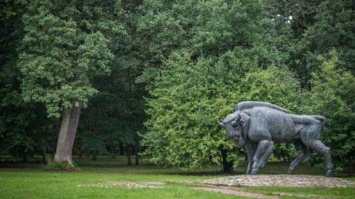 Kauno savivaldybė už 14,3 mln. eurų prie Ąžuolyno statys lengvosios atletikos maniežą