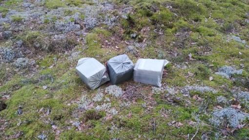Druskininkų pasieniečių išsigandę kontrabandininkai pametė 2 tūkst. pakelių cigarečių