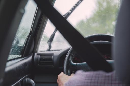 Druskininkuose automobilis susidūrė su briedžiu