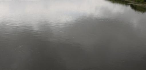 Mituvos užtvankos vanduo užterštas mikroorganizmais