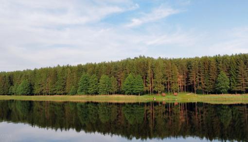 Nerekomenduojama maudytis Pastovio ežere