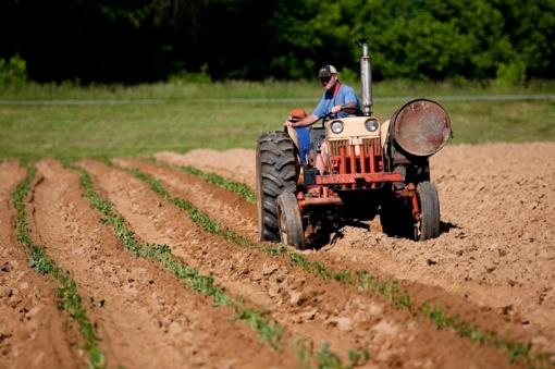 Šventežeryje – neblaivus traktoristas