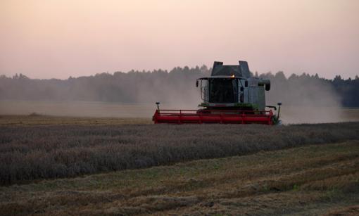 Karantinas koreguoja ir žemės ūkio darbus