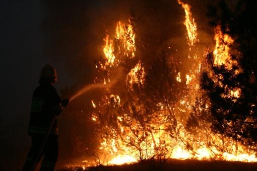 Tauragėje degė lentpjūvė
