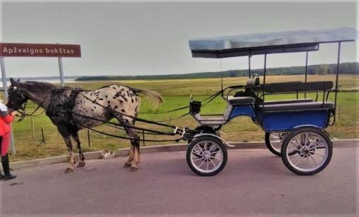Karietai nuvažiavus nuo kelio (?) – trys sužeistieji (ATNAUJINTA)