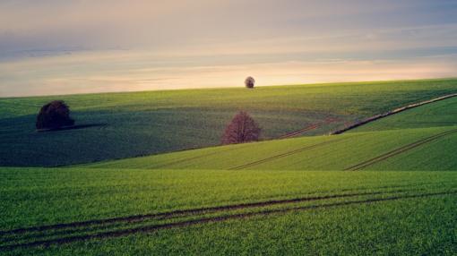 Ūkininkai išsigandę: naujoji mėšlo terpimo tvarka ne jų kišenei