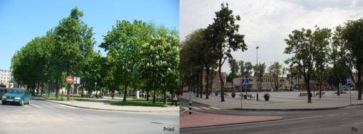 Iškirsti Kuršėnų medžiai: pavyzdys ar pamoka?