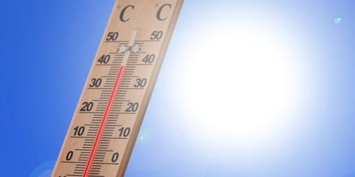 2019-ųjų liepa buvo šilčiausias mėnuo nuo matavimų pradžios, patvirtino mokslininkai