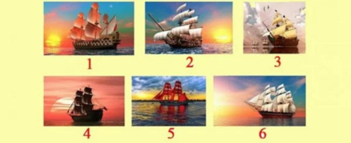 Pasirinkite laivą ir raskite savo gyvenimo kelią