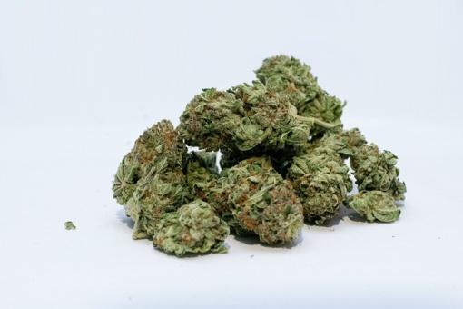 """Šilutės rajone pas jaunuolį aptikta daugiau nei 700 gramų, įtariama, """"žolės"""""""