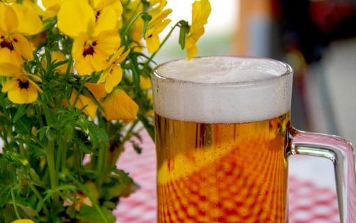 E. Šiškauskienė: draudimas alkoholiu prekiauti lauko kavinėse yra perteklinis