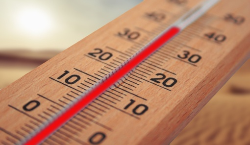 Ministrė: per vasarinę karščio bangą Prancūzijoje mirė 1500 žmonių