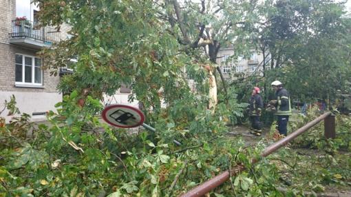 Sekmadienį ugniagesiai 27 kartus vyko šalinti stipraus vėjo išverstų medžių