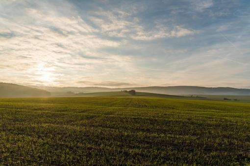 Pristatys žemės ir nekilnojamojo turto masinį vertinimą